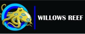 Willows reef